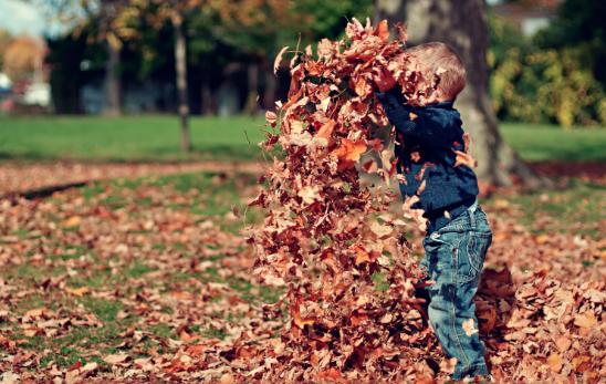 Welche Wind und Wetter Creme ist die Beste für mein Kind?