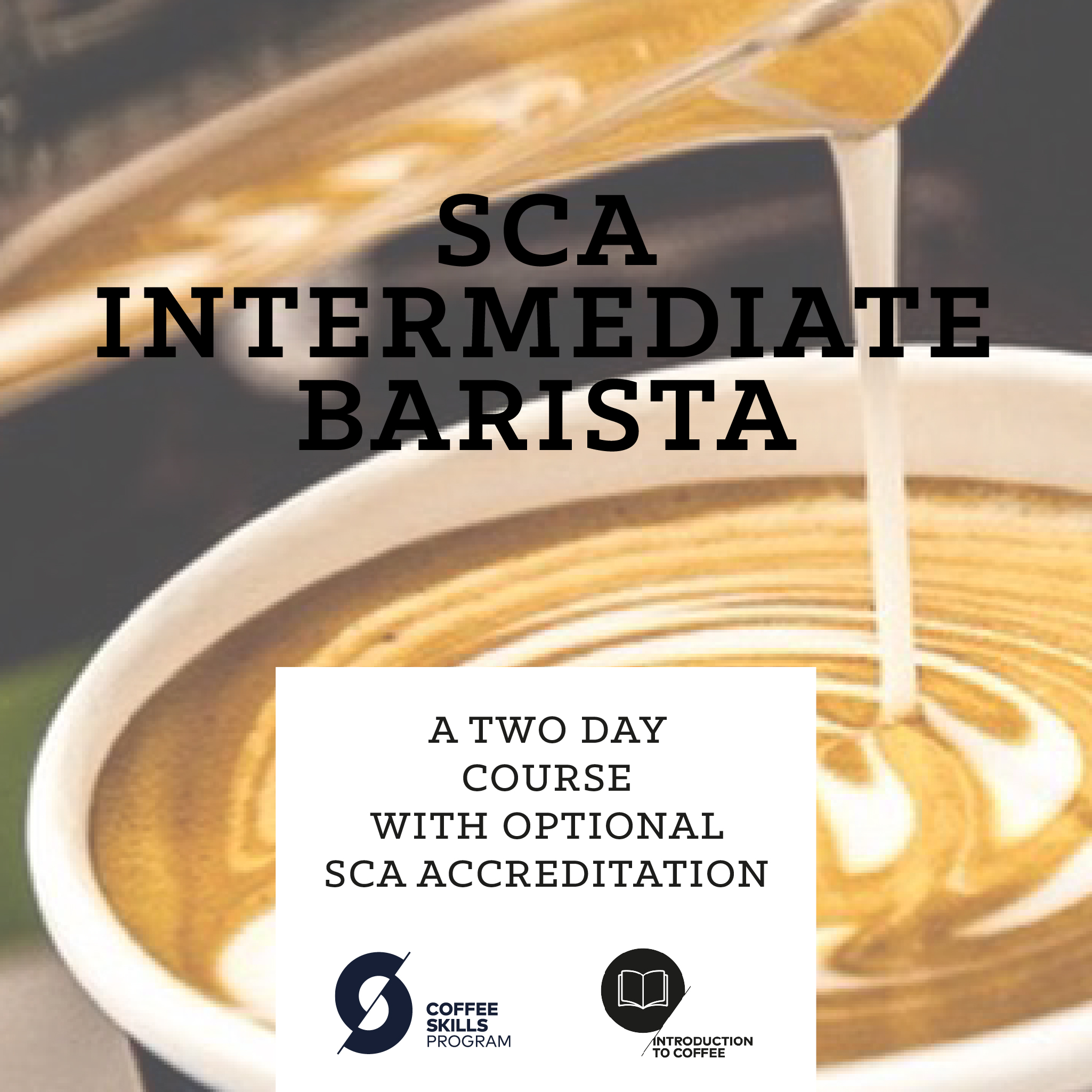 SCA Intermediate Barista