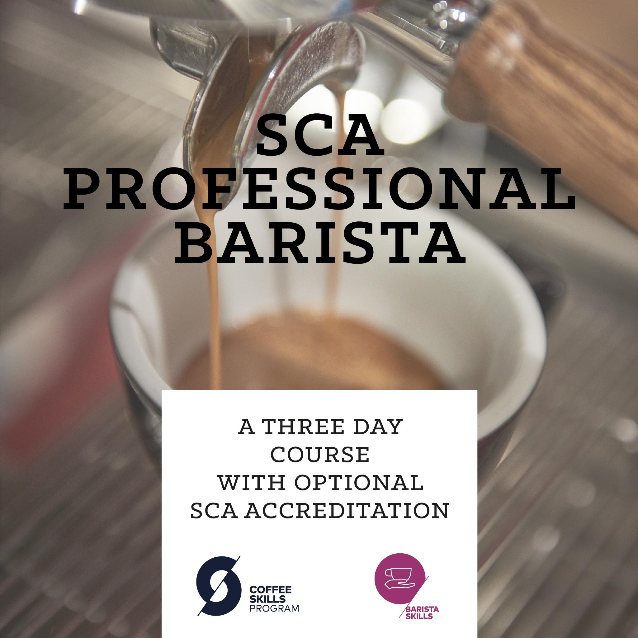SCA Professional Barista