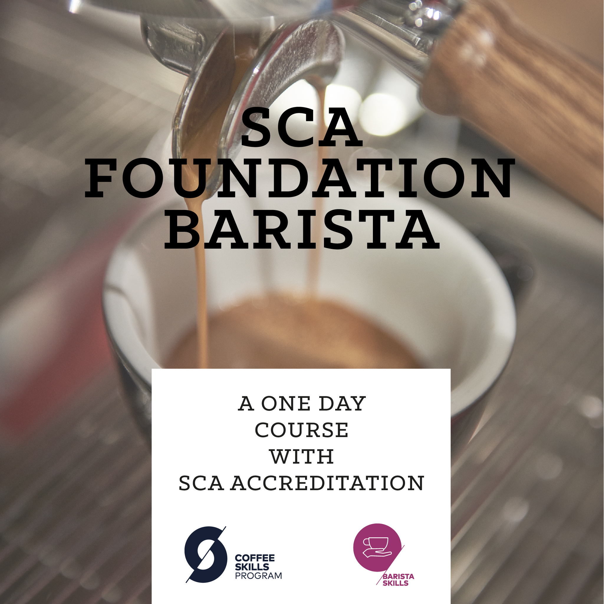 SCA Foundation Barista