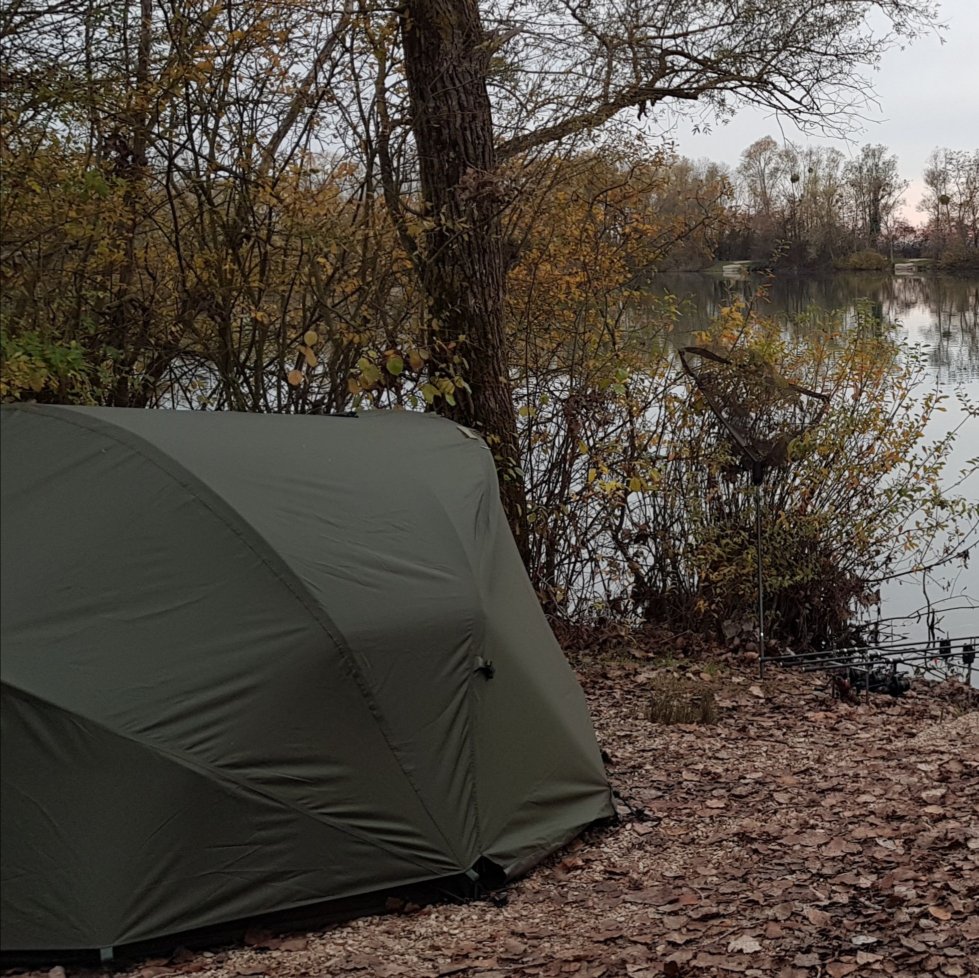 Cyprinus Base HQ & Wrap Combo