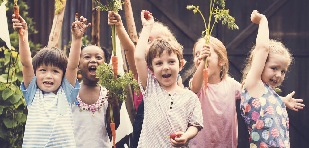 Ferry Morse Gardening In School Program