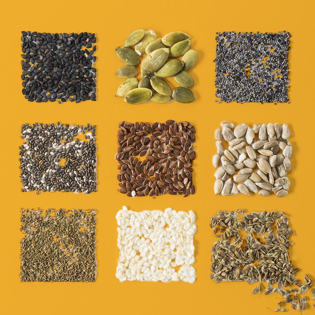 Shop Ferry Morse Surprise Seed Gardening Kit