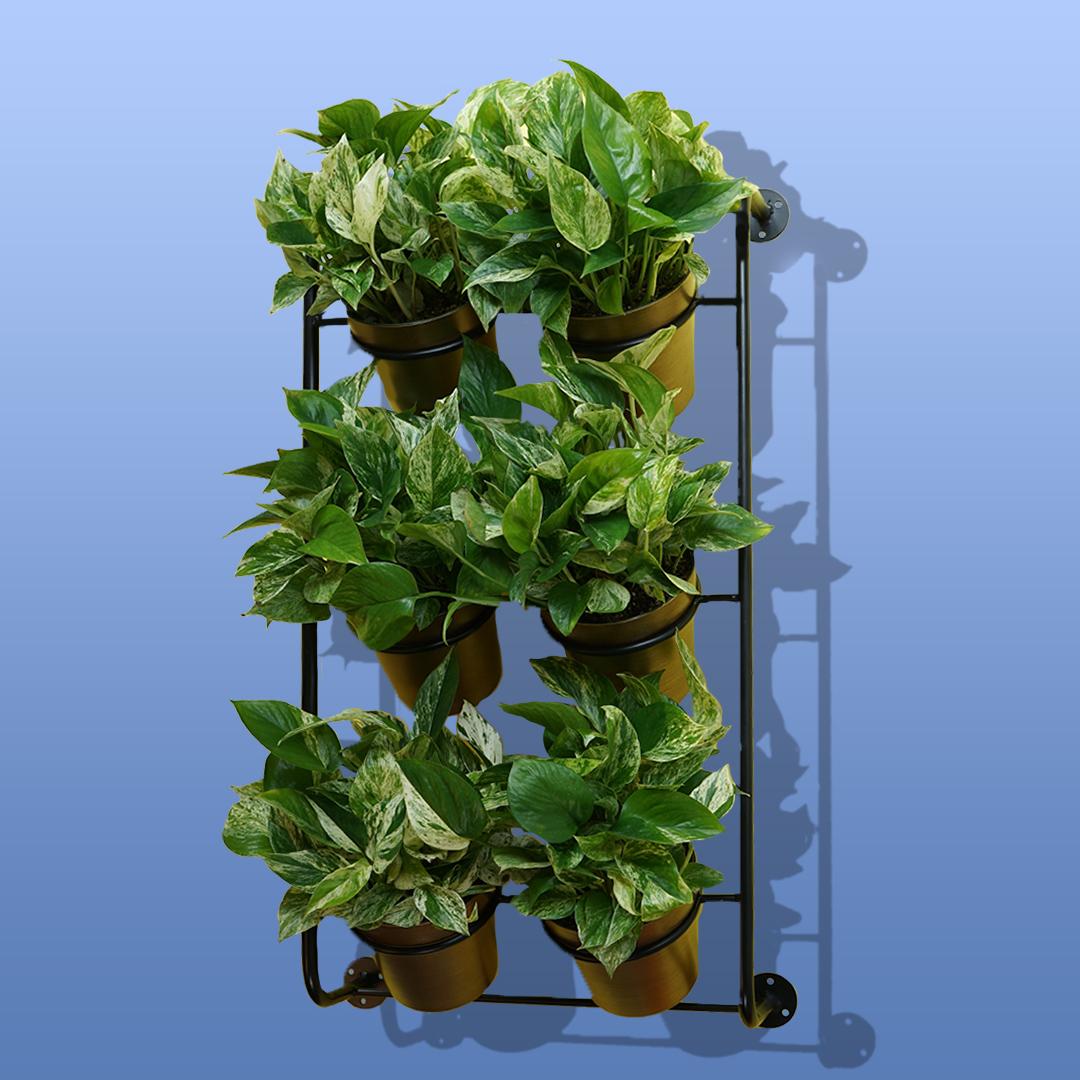 Shop Ferry Morse Vertical Garden Kit