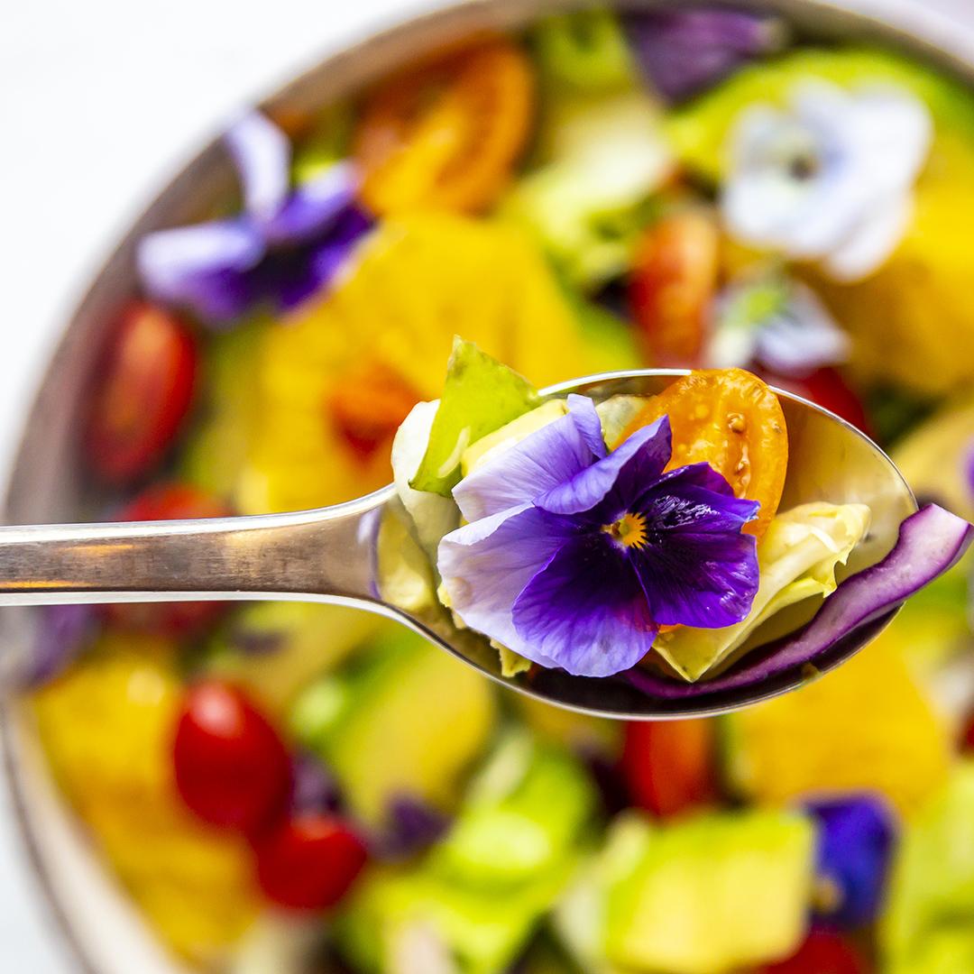 Shop Ferry Morse Edible Flowers Gardening Kit