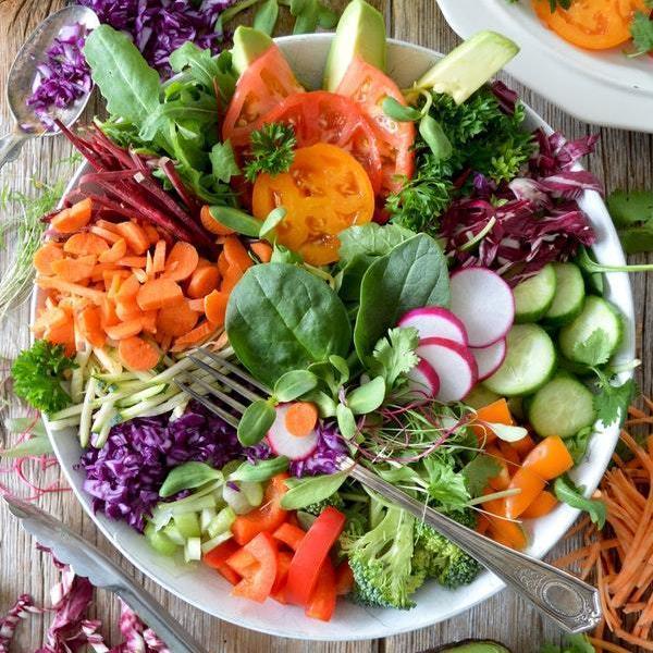Shop Ferry Morse Salad Gardening Kit