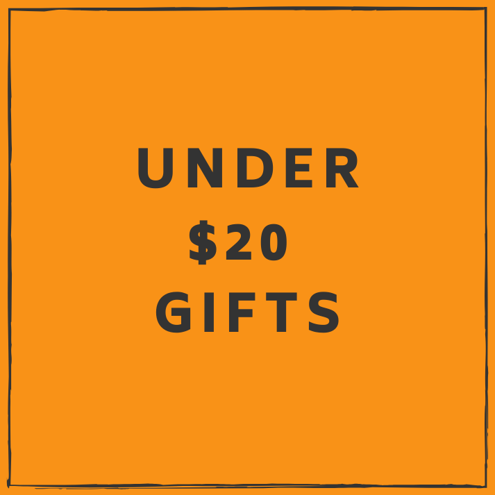 Under $20 Gifts for Kids