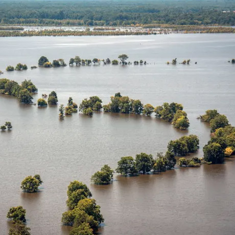 Flooding in the Mississippi Delta