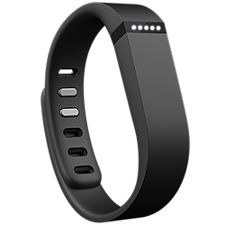Fitbit Flex Fitness Band