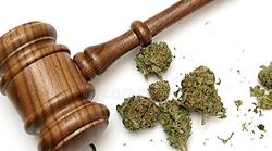 La loi suisse et le CBD