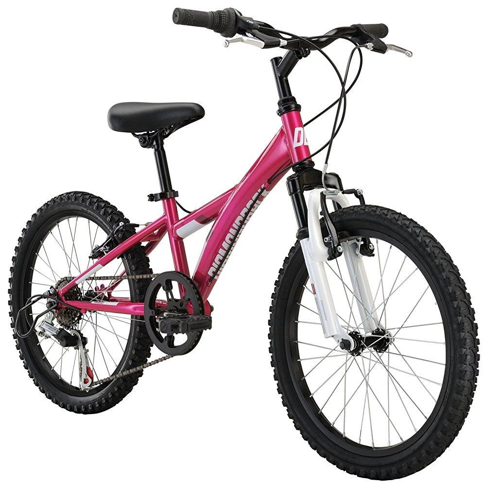 Dunedin Kids Bike Rental