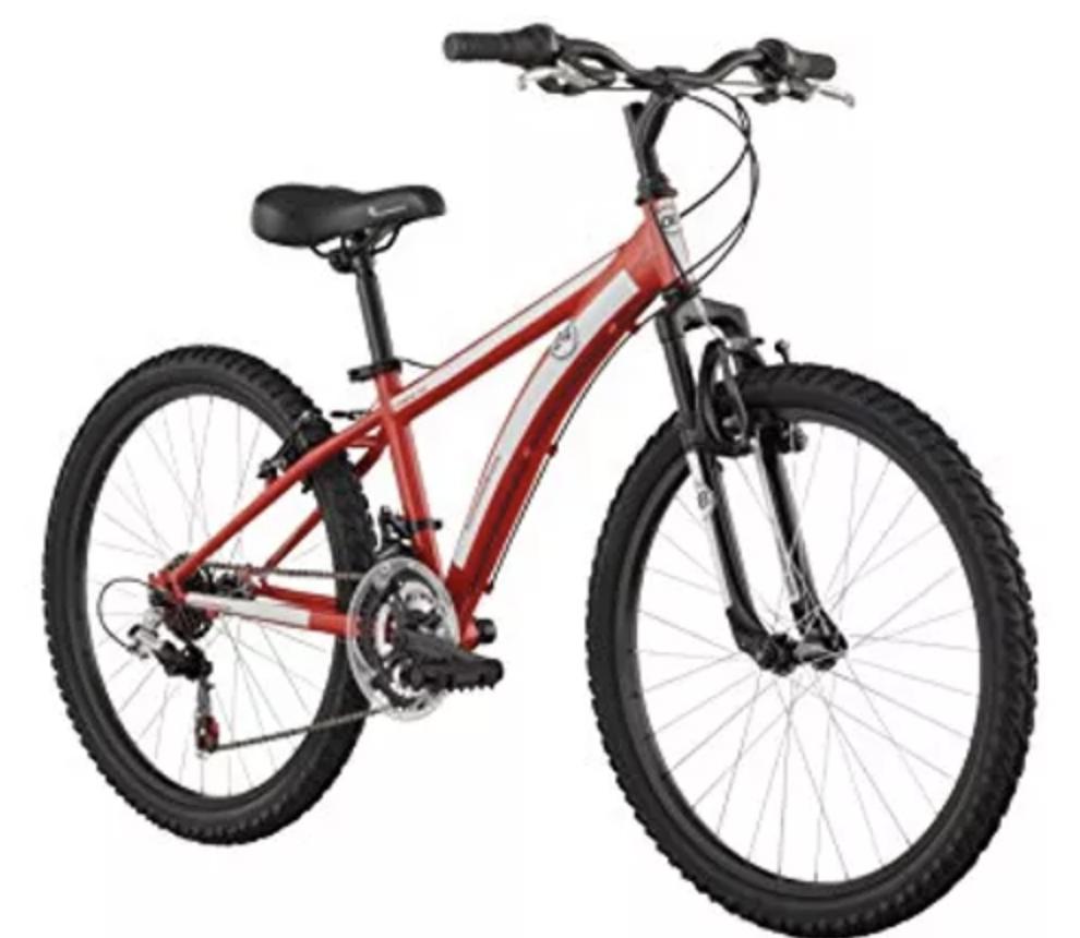 kids bike rental