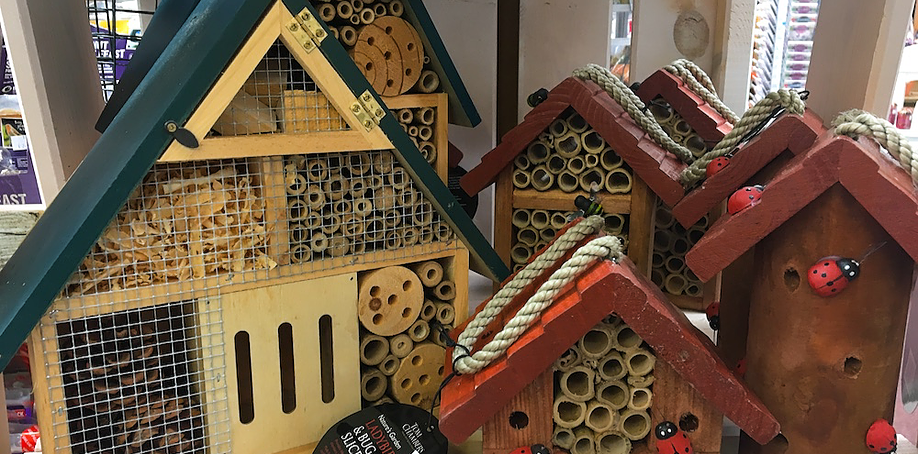 wild bird care, insect houses