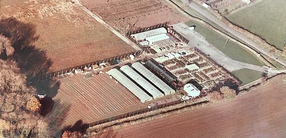 1981 Laylocks Garden Centre