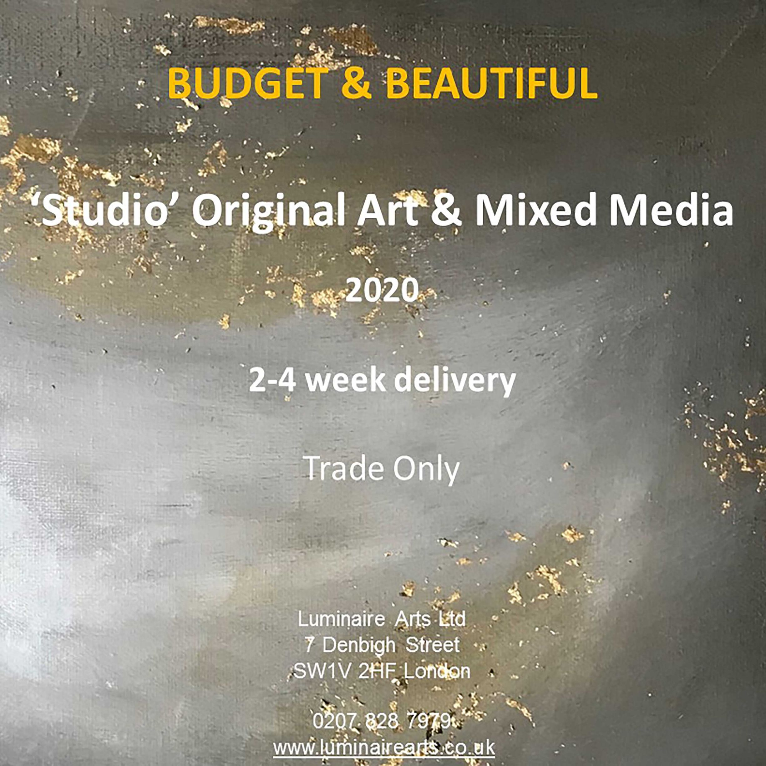 Budget Original Art & Mixed Media