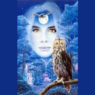The Wise Owl's Daughter