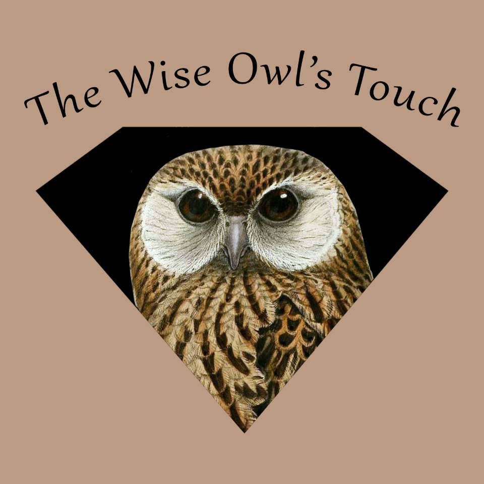 The Wise Owl's Touch