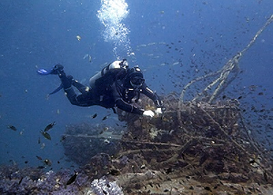 Scuba Diving at King Cruiser wreck