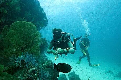 Sukeltajat tutkimassa merenpohjaa