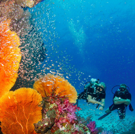 Scuba Diving and Snorkeling in Khao Lak, Thailand