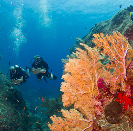 Scuba Diving courses in Similan Islands, Thailand