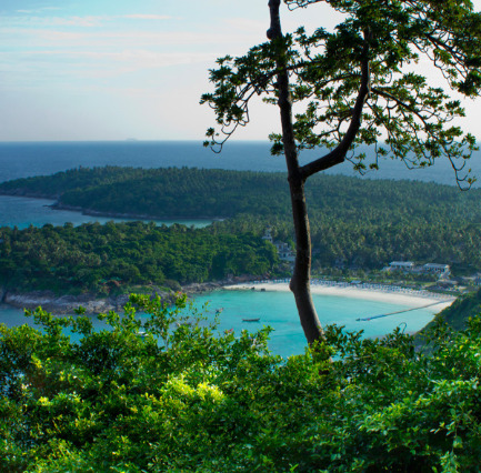 Snorkeling and Island trips in Raya Yai Island, Thailand