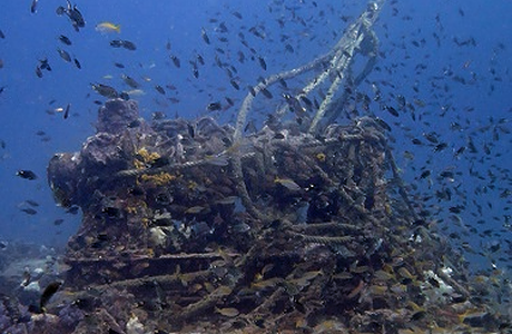 Explore wreck diving with Raya Divers