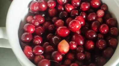 Beautiful cranberries!