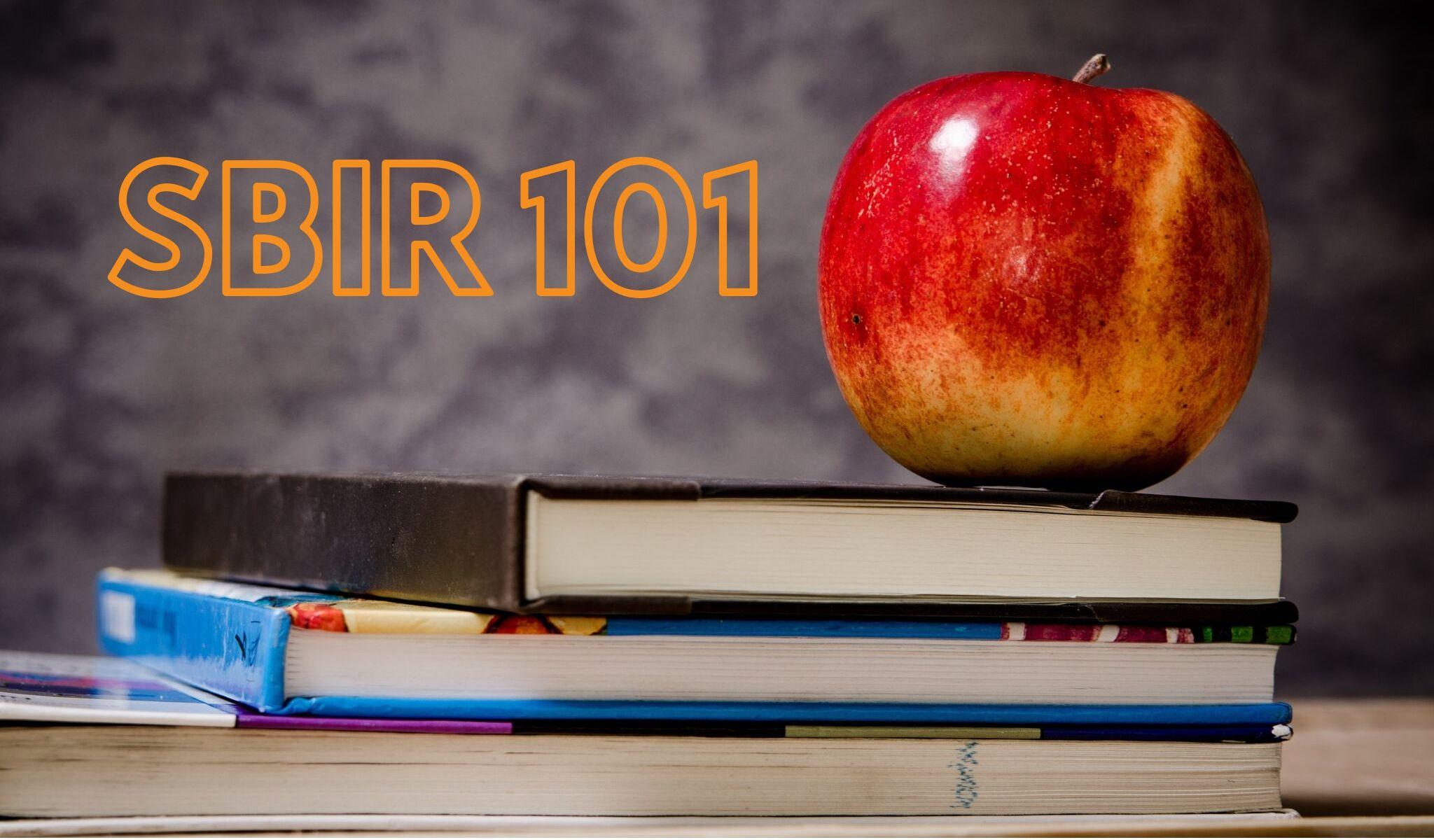 SBIR 101