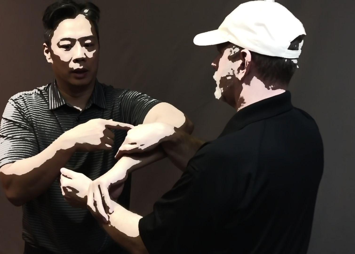 Wing Chun Volume 2