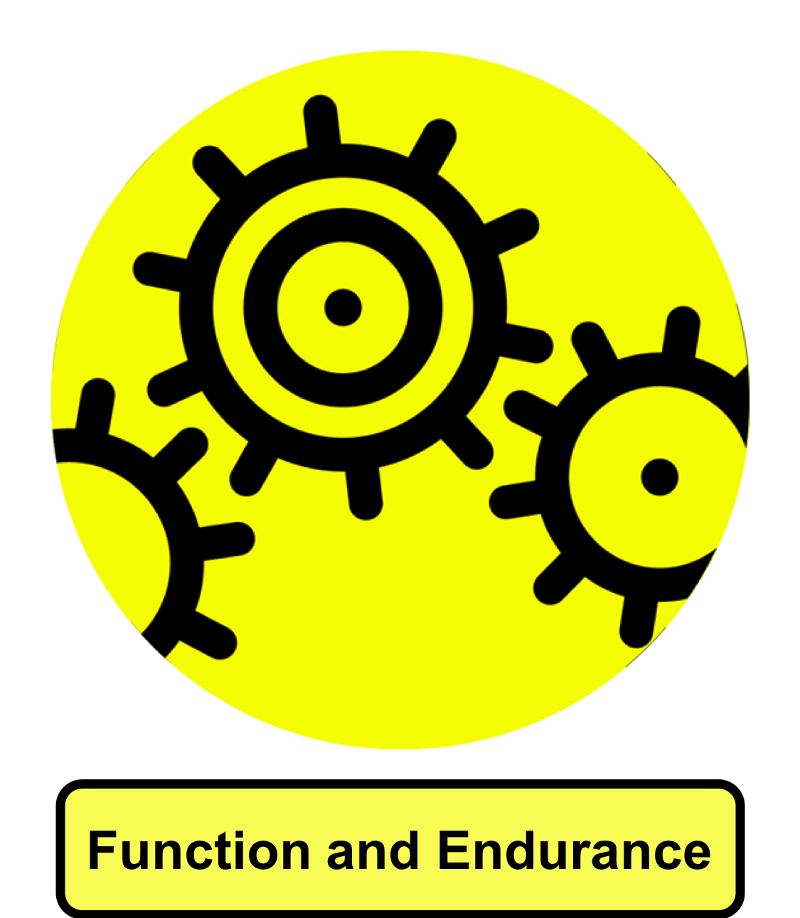Function & Endurance