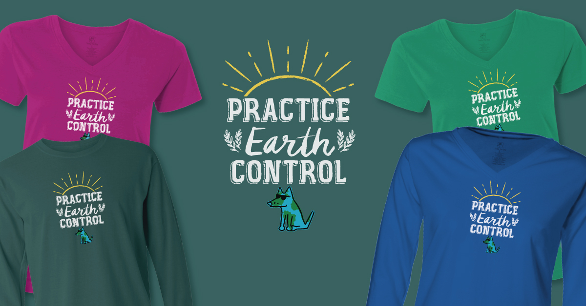Practice Earth Control