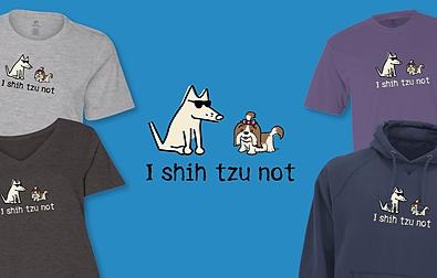 I Shih Tzu Not Teddy the Dog Pick of the Litter