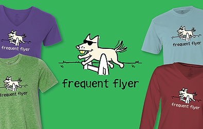 Frequent Flyer Teddy the Dog Pick of the Litter