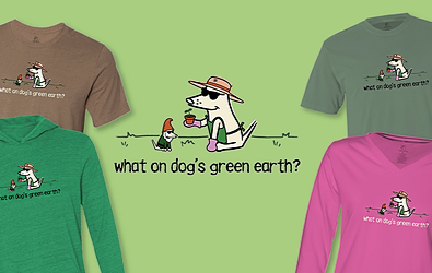 What on Dog's Green Earth Teddy the Dog Pick of the Litter