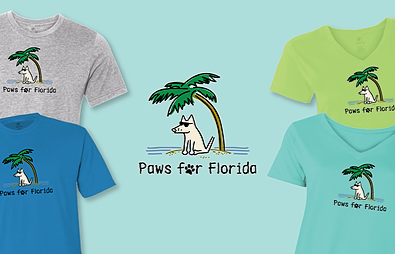 Paws For Florida Teddy the Dog Pick of the Litter