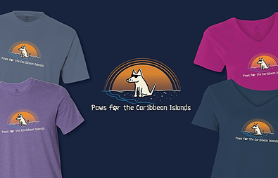 Paws For The Caribbean Islands Teddy the Dog Pick of the Litter