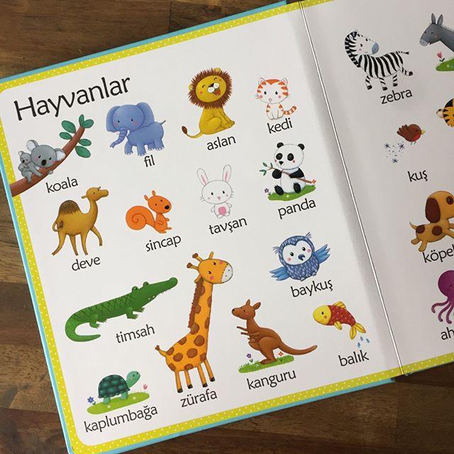 İlk Kelimelerim - Bebek Kitapları
