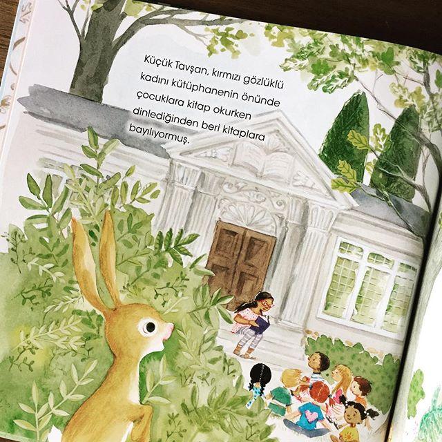 Kütüphane Tavşanı