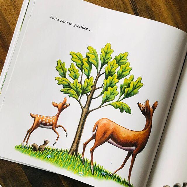 Küçük Ağaç