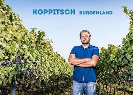 Alexander Koppitsch