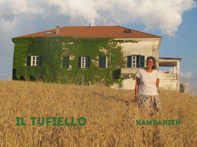 Il Tufiello - Weingut in Kampanien