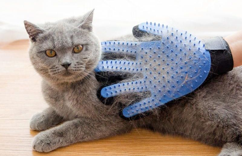Cat/dog massage comb & Deshedding pet gloves