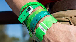 St. Patrick's Day Wristbands